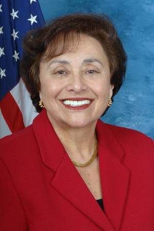 Rep. Nita Lowey, D-N.Y.-17, along with other representatives has announced that WestCOP will receive nearly $2 million in funding to combat homelessness among veterans.
