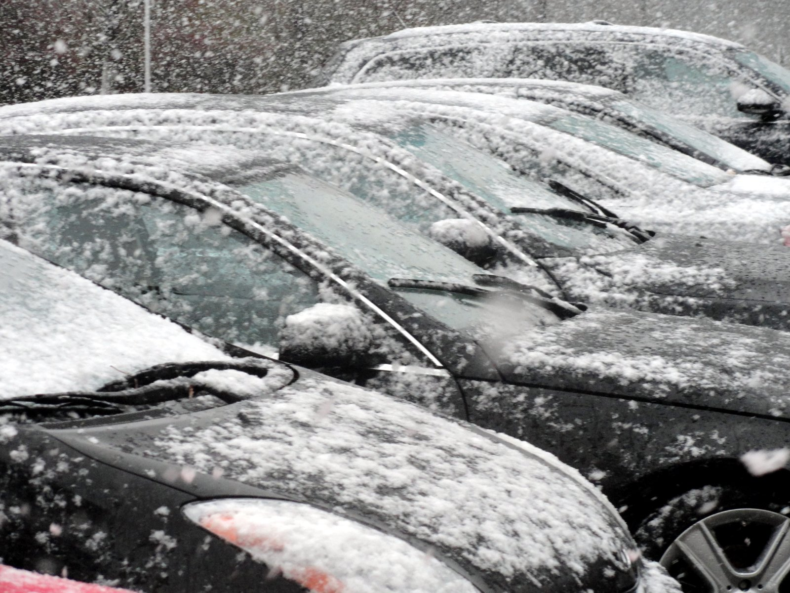 Tuesday's winter storm has forced Westchester Community College to cancel all afternoon and evening classes.