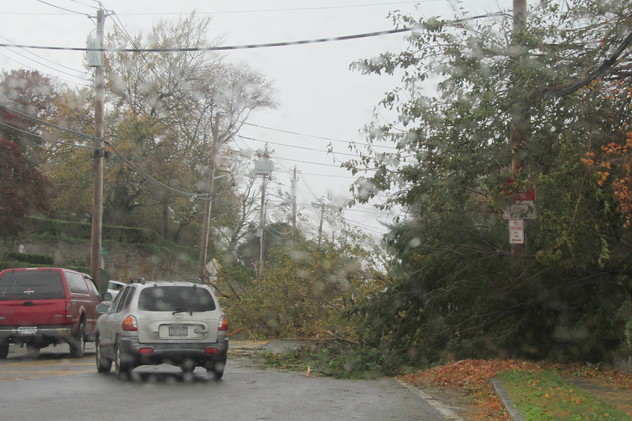 Tree branches and wires were down across New Rochelle after Hurricane Sandy ripped into town