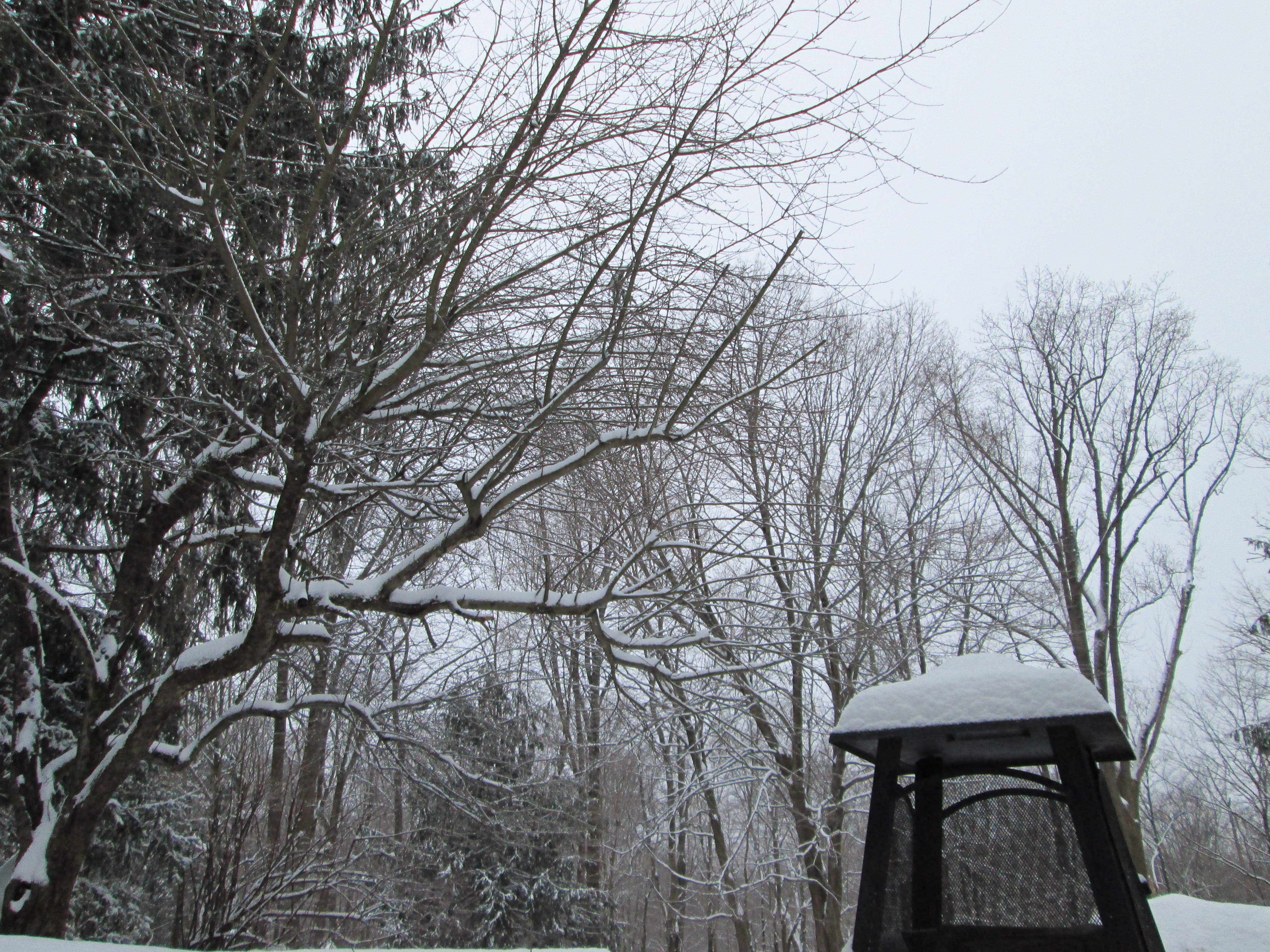 Several inches of snow an ice fell across Westchester County overnight.
