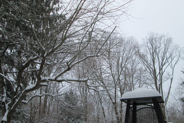 Wednesday's snow fall has turned Feb. 20, originally a vacation day, into an instructional day for the Chappaqua school district.