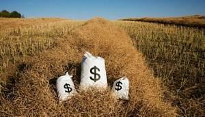 Выгодный бизнес в сельском хозяйстве