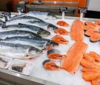 Бизнес план мини рыбного магазина