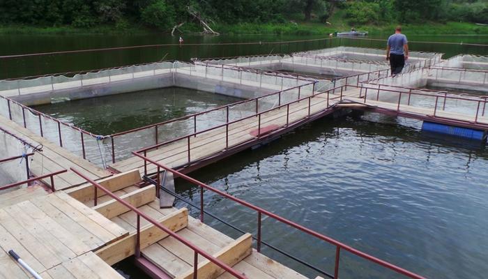 Внешний вид нескольких басеинов для бизнеса по разведению рыбы.