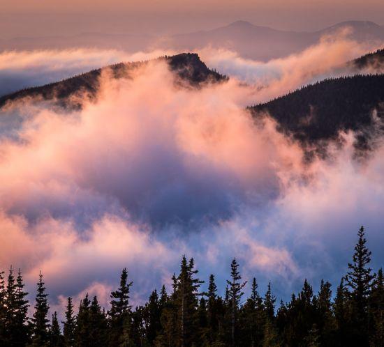 The Treeline Colorado Rockies