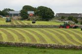 Farming in Ireland