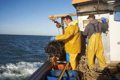 UK fishermen