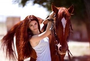 Состав шампунь для лошадей
