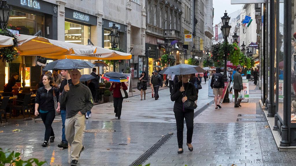 Что делать в дождь в будапеште