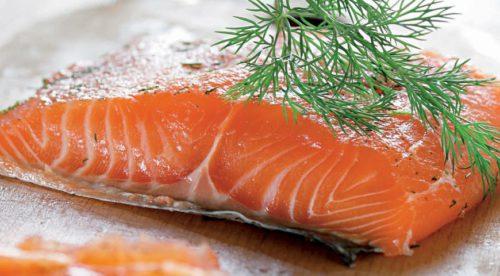 Разведение лосося как бизнес