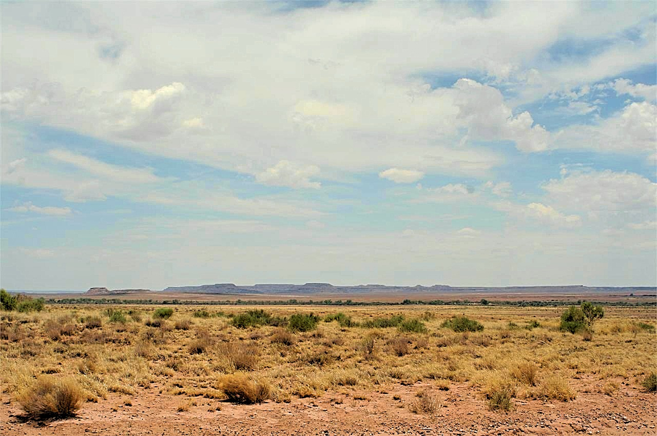 this is a great shot of the mountains to the south in Navajo County