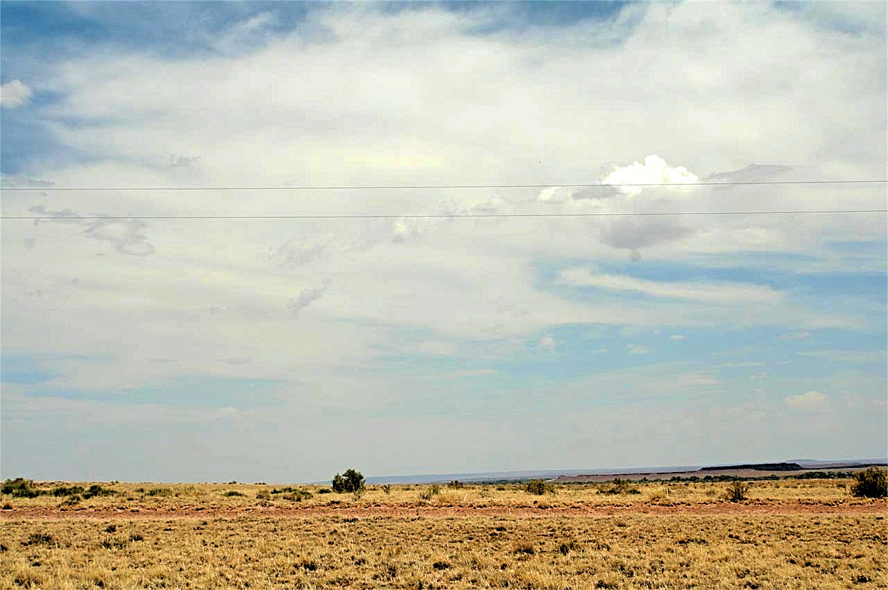 Rural two plus acres for sale in Navajo County with utliites