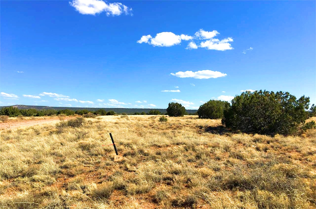 Land for Sale in Golden Horse Ranch 1 Acre Plus