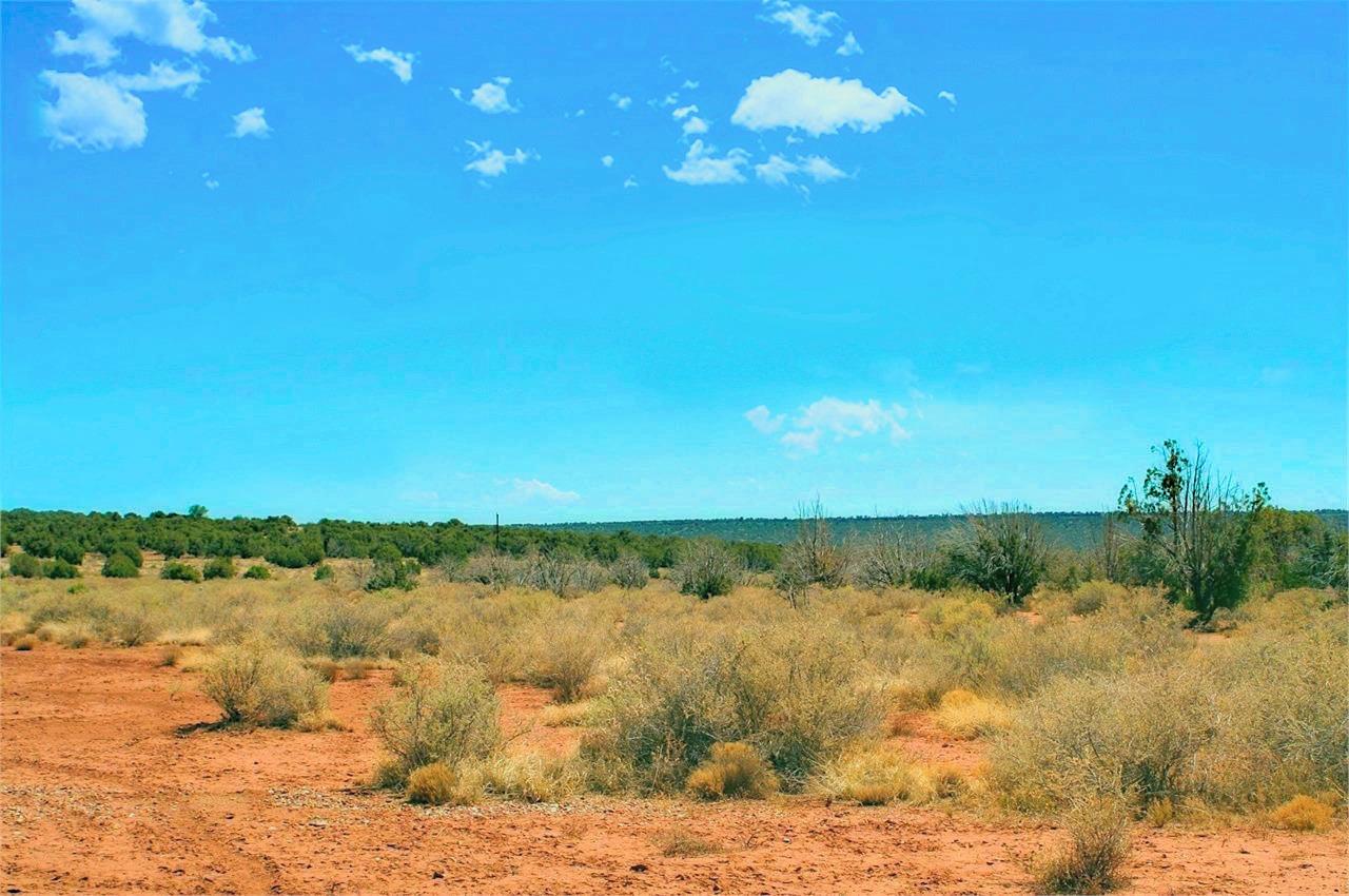 View towards South Navajo County