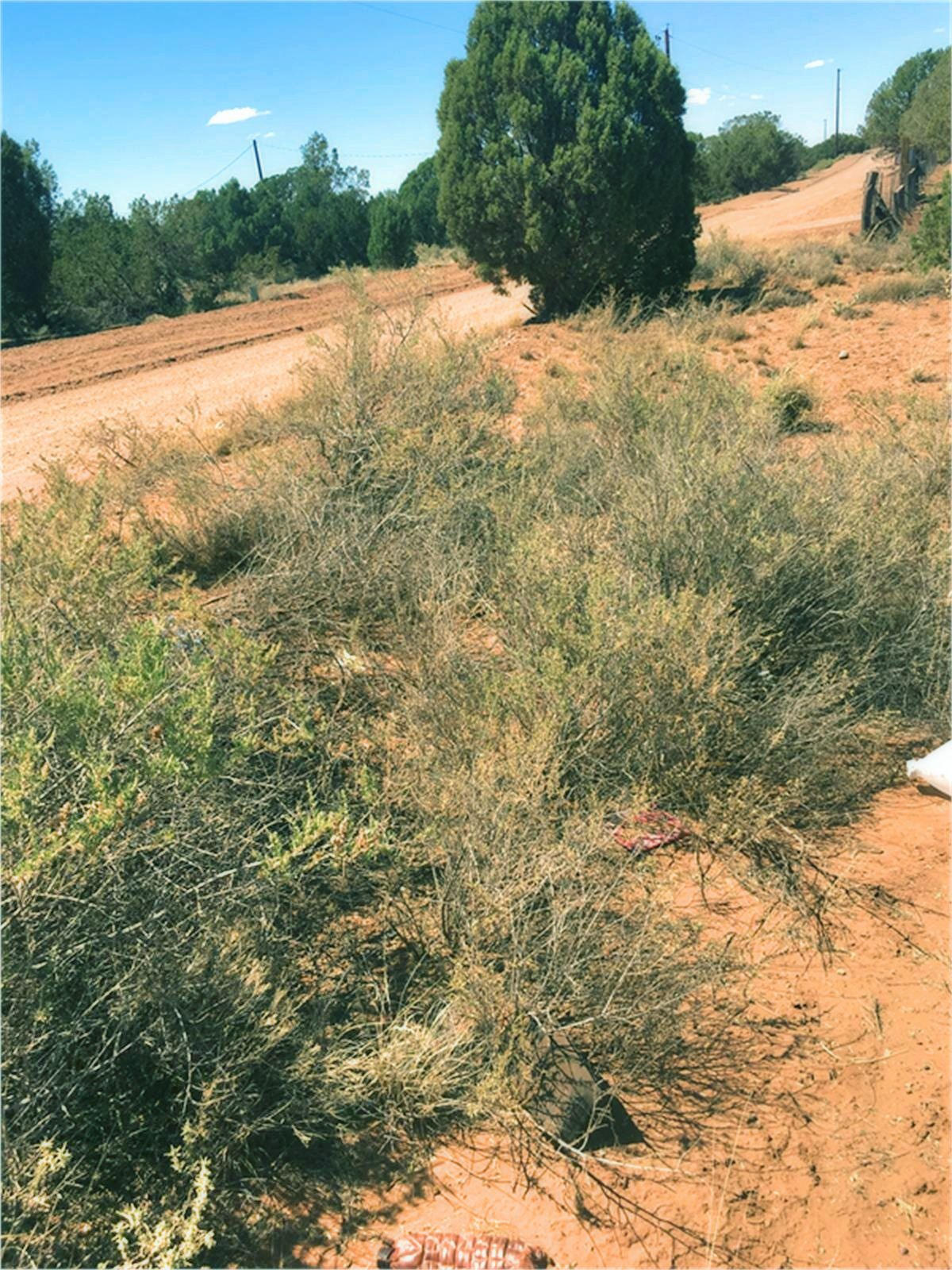 4451 Clydesdale Rd Snowflake Az - Dirt Road
