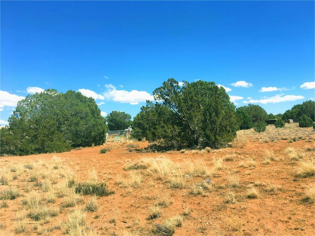 4451 Clydesdale Rd Snowflake Az - View to Back of the Lot