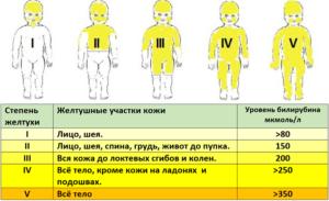 Повышен билирубин у взрослого или новорожденного - что это значит, причины и лечение