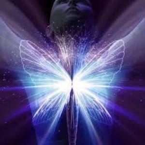 Nos amis les papillons (symbolique) - Page 2 Papillon_ov9prt