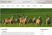 SinerWeb website pascolialti.com