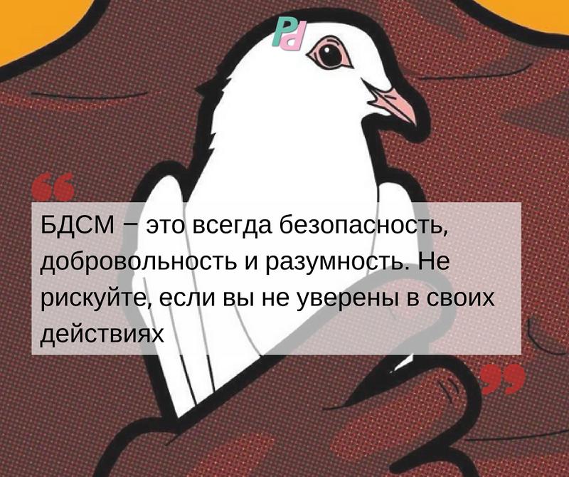 Фемдом: инструкция