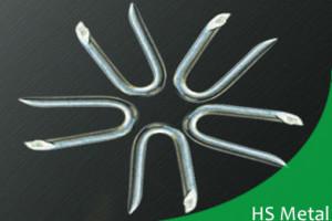 Galvanized fence nails