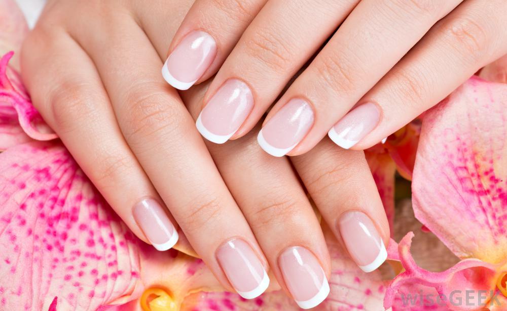 Studio nails camrose