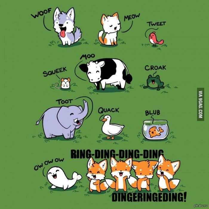 Как говорят лисы