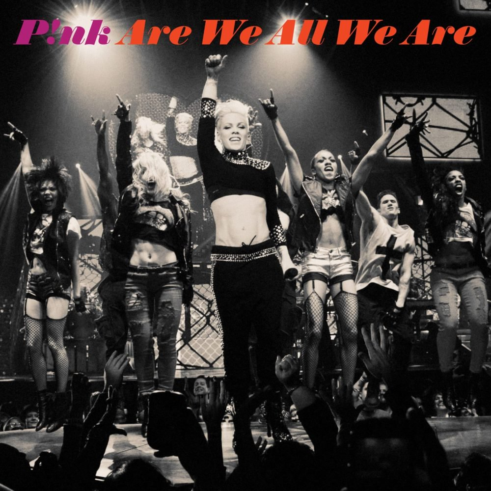Are we all we are lyrics pink
