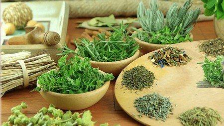 Похудение с помощью сенны