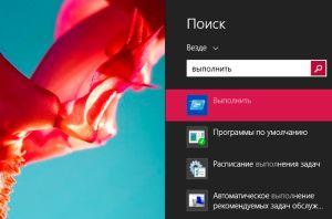 Запуск службы Выполнить через поиск в Windows 8