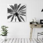 Skyward Palm Canvas Giclee - 2