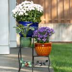 Jewel-Tone Flower Pot Trio - 6