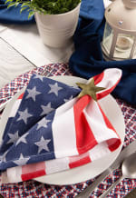 Americana Braided Placemat (Set of 6) - 5
