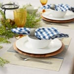 French Blue Middle Stripe PVC Woven Placemat - 1