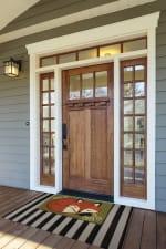 Cozy Fox Doormat - 6