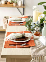 Fiesta Rust Check Set of 6 Placemats - 5