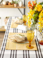 Fiesta Curry Check Set of 6 Placemats - 4