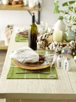 Fiesta Green Check Set of 6 Placemats - 4