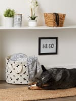 Black Paw Bone Polyester Round Medium Pet Storage Bin - 8
