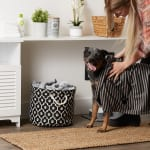 Bone Dry Black Stripe Embroidered Paw Pet Towel - 3