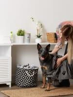 Bone Dry Black Stripe Embroidered Paw Pet Towel - 6
