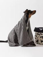 Bone Dry Black Stripe Embroidered Paw Pet Towel - 9