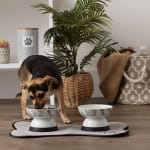 Bone Dry Raised Marble Medium Set of 2 Pet Bowls - 4