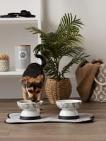 Bone Dry Raised Marble Medium Set of 2 Pet Bowls - 6