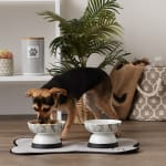 Bone Dry Raised Marble Medium Set of 2 Pet Bowls - 8