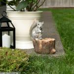 Squirrel Tree Trunk Bird Feeder - 4