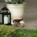 Woodland Squirrel Bird Feeder - 3