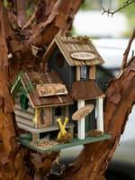 Bass Lake Lodge Birdhouse - 1