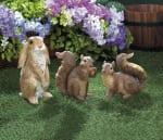 Curious Squirrel Garden Statue - 1