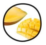 MoHA! Mango Slicer - 5